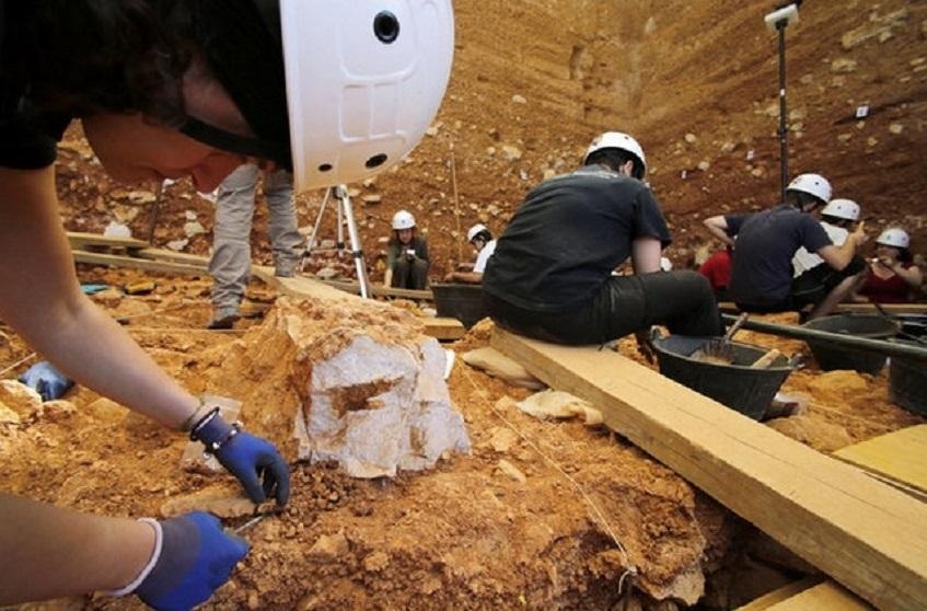 Новое открытие испанских учёных: жители Атапуэрки ели кошек и собак