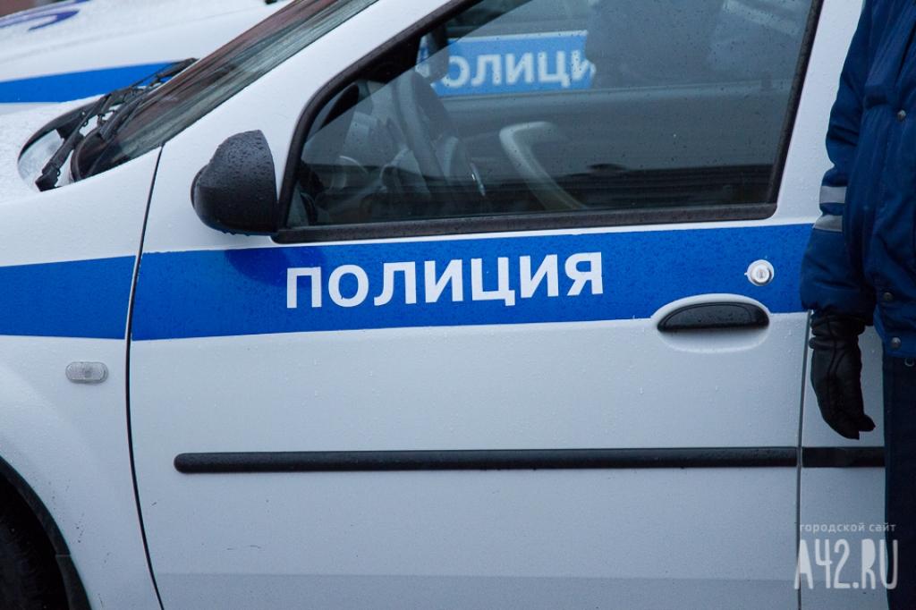 7-летняя девочка попала под колеса полицейского авто
