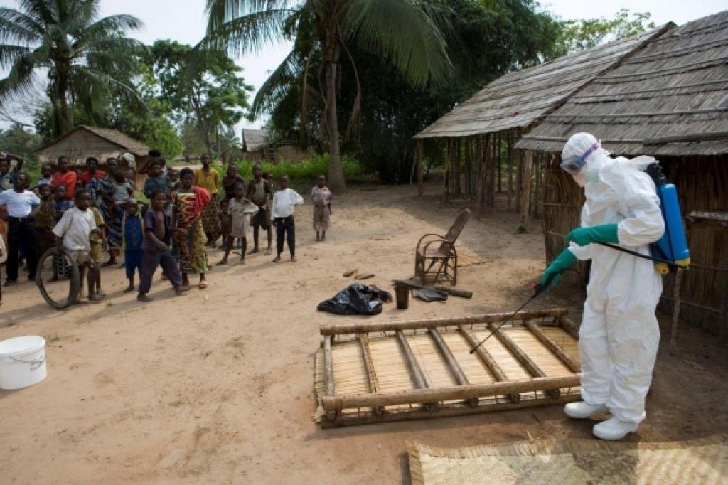 Заболевания Эболой в России не подтвердились